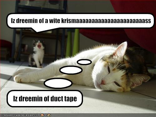 funny-pictures-cats-dream-of-very-different-things