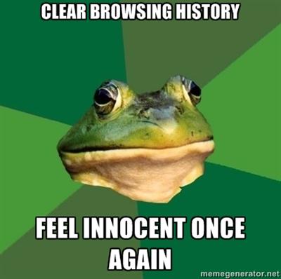 foulbachbrowsinghistory