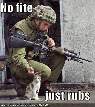 funny-pictures-soldier-and-cat-733603