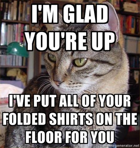 funnycatshirts