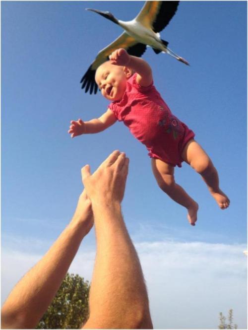 storksbabies