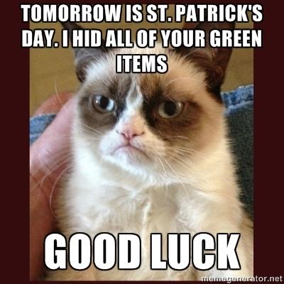 53394-St-Patricks-Day-Memes--PandaWh-aFTM
