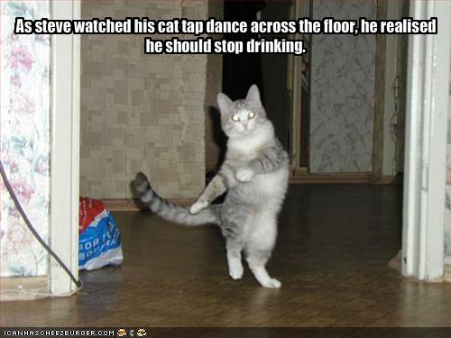 funny-pictures-your-cat-is-tapdancing-and-you-are-drunk