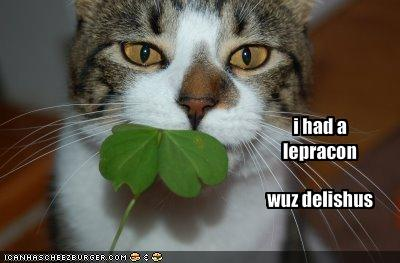 funny_pictures_your_cat_ate_a_leprechaun1