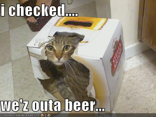 funnycatyou-are-out-of-beer