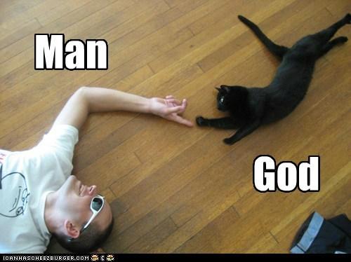 funnycatsmangod