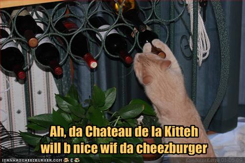 funnycat-wants-to-pair-his-wine-with-a-cheeseburger
