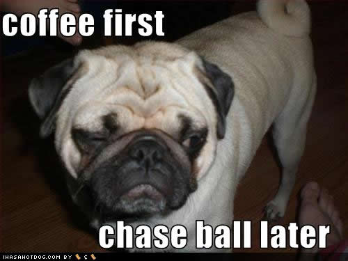 coffee-first-ball-later