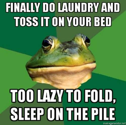 afoulbachelor-frog-laundry