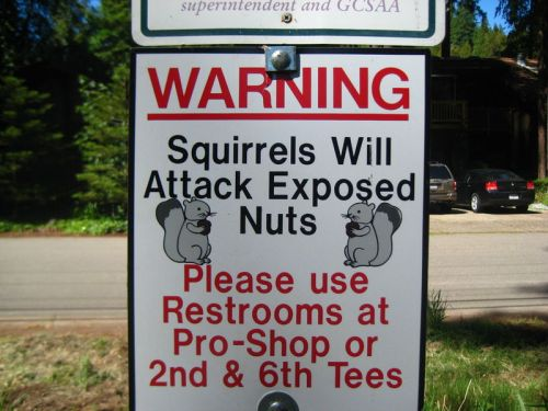 funny-signs-photo-1