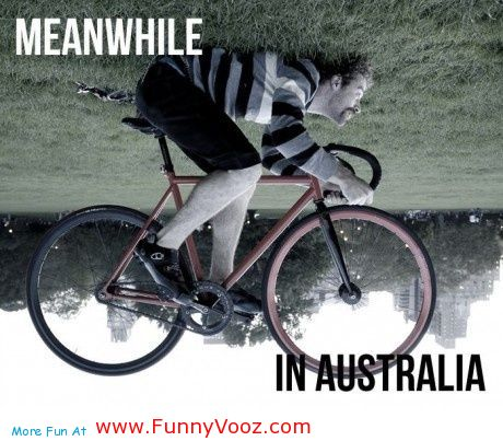 meanwhile-in-australia-funny-picture-15996
