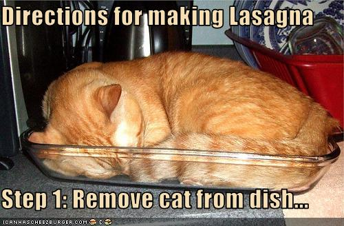 funny-pictures-cat-is-in-your-lasagna-dish