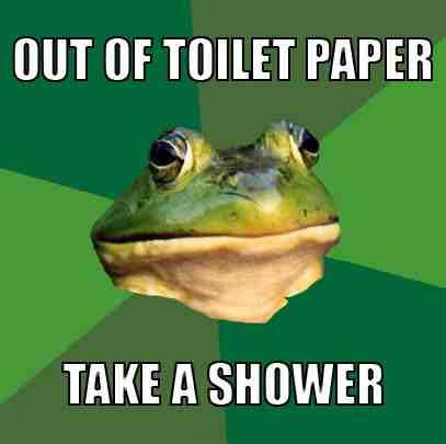 afoul-bachelor-frog-meme