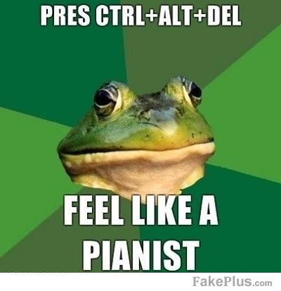 a-foul-bachelor-frog-has-mastered-the-keyboard