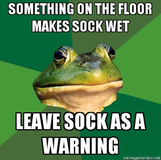 afoul bachelor frog something wet on the floor