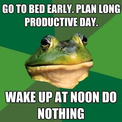 afoul-bachelor-frog-productive-day