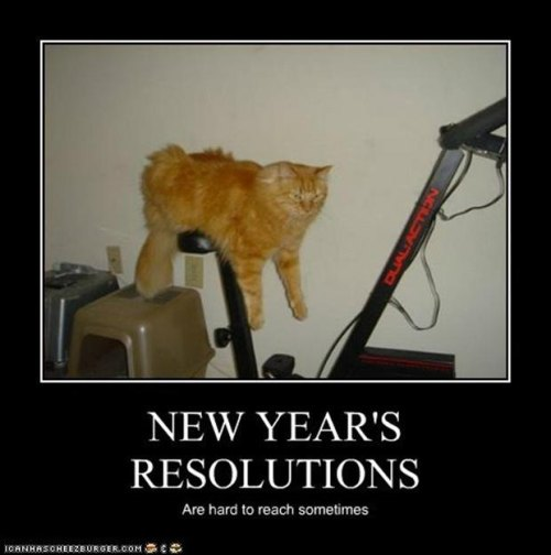 Funny-new-years-resolutions-demotivational-posters_f_improf_620x625