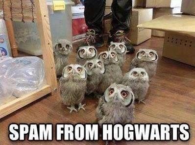 hogwartsspam