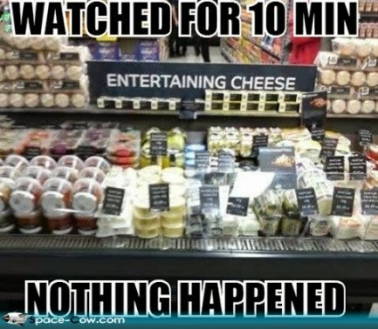 Entertaining cheese funny things