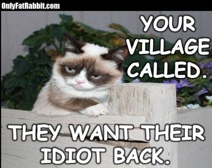 grumpycatvillage