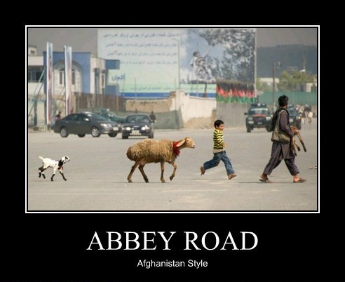 AbbeyRoadAfghan