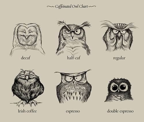 coffeeowls